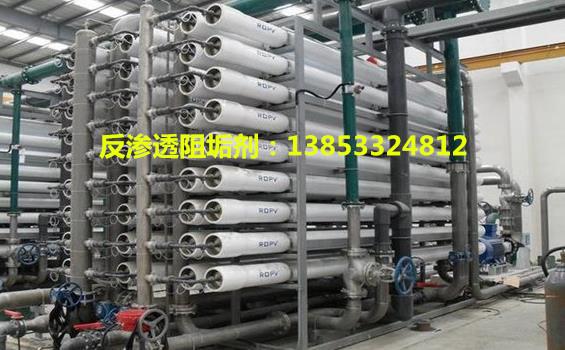 淄博反渗透膜阻垢剂YF795【酸式】生产厂家