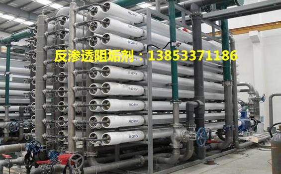 新疆反渗透膜阻垢剂YF750适用COD高地表水