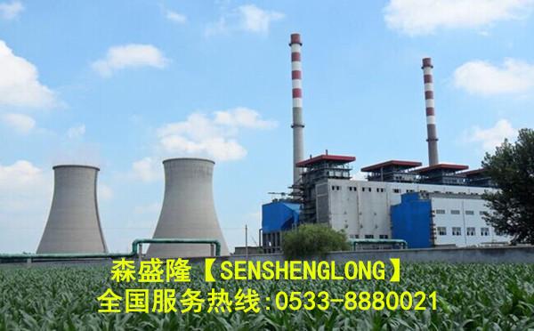 森盛隆水处理阻垢剂电厂企业应用