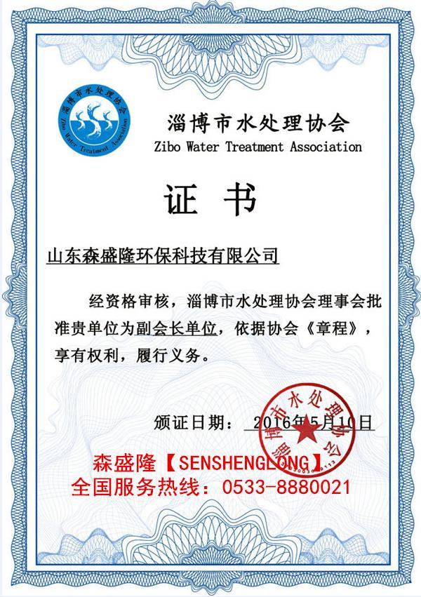 森盛隆锅炉除垢剂水处理协会会长单位证书