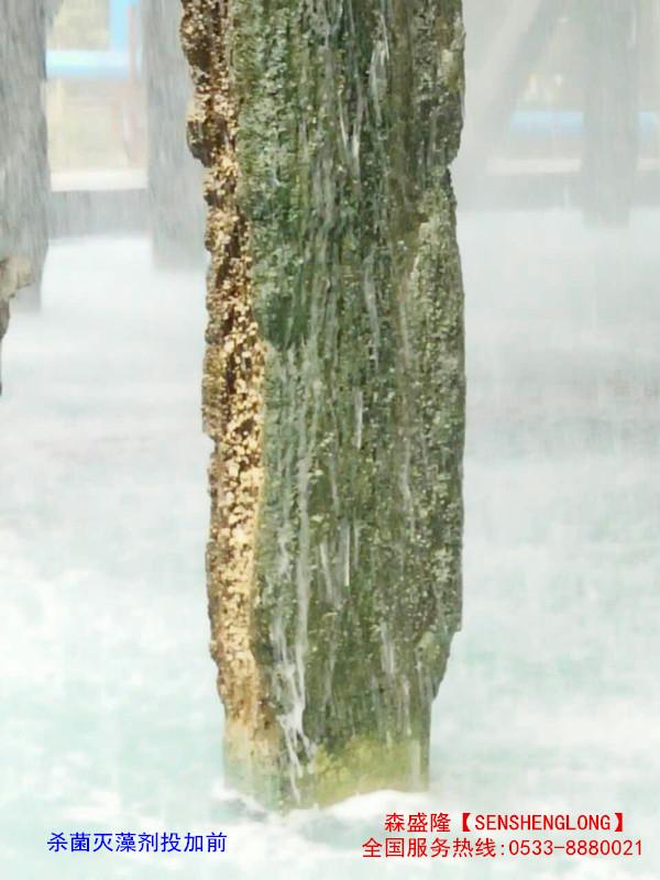 杀菌灭藻剂投加前