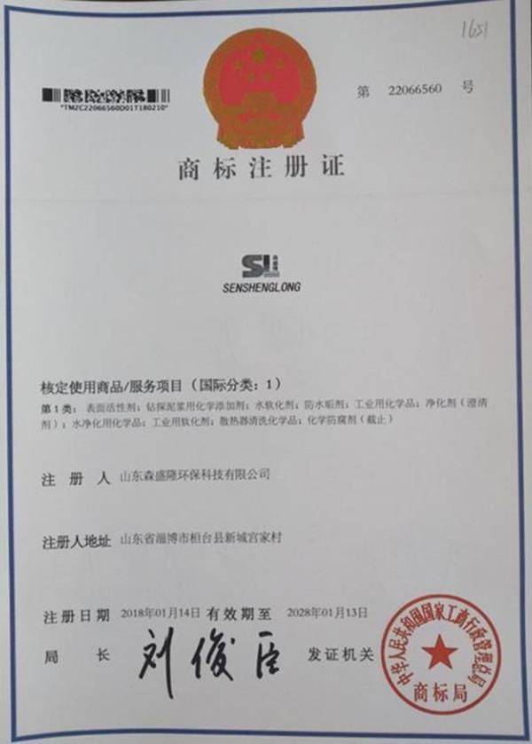 SSL/森盛隆注册商标证书